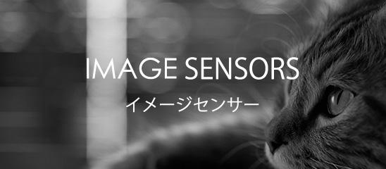 IMAGE SENSORS イメージセンサー
